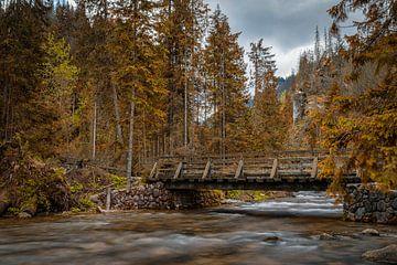 Herfstsfeer in Zakopane, Polen von Peter Korevaar