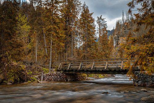 Herfstsfeer in Zakopane, Polen van