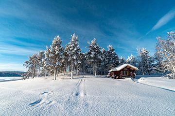 Winter Wonderland van Laurens Kleine