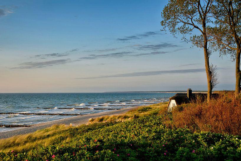 Wohnen am Strand von Claudia Moeckel