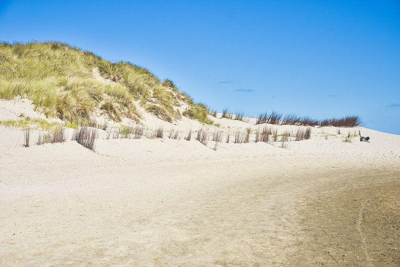 At the beach (Texel) van Alessia Peviani