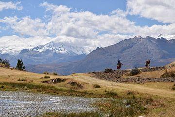 Het leven in de bergen van Huaraz, Peru van Siemon Vanderhulst