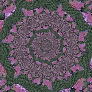Cirkels van Spiralen van Tropische Vissen III van Tis Veugen