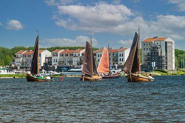 Botters op het Gooimeer.