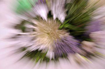 Zoomblur bloemen von Yvonne Balvers