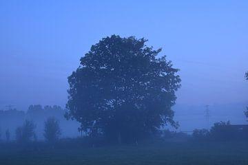 Blauw van Johanna Varner