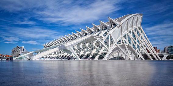 City of Arts and Sciences (Valencia) van Rob van der Teen