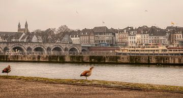 De Sint Servaasbrug bij Maastricht van John Kreukniet