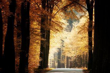 Für immer Herbst von Kees van Dongen