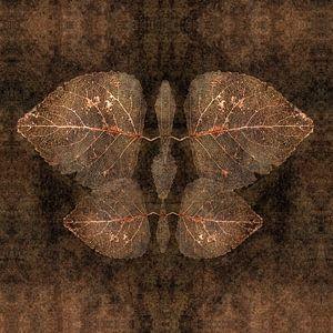 Der Herbst als entomolgisches Objekt