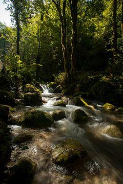 rivière de montagne sur Marika Rentier