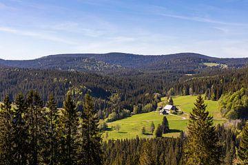 Schwarzwaldhof in het Hoge Zwarte Woud bij de Feldberg van Werner Dieterich