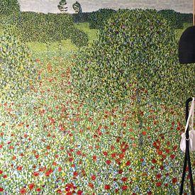 Klantfoto: Klaprozenweide, Gustav Klimt, als behang