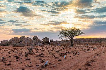 Straat in de Kalahari-3 van Britta Kärcher