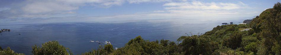 Wild westcoast Nieuw Zeeland