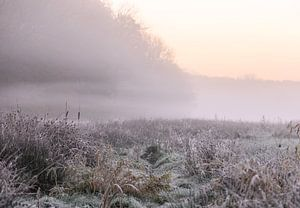 paysage atmosphérique sur Tania Perneel