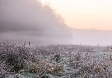 sfeervol landschap van Tania Perneel