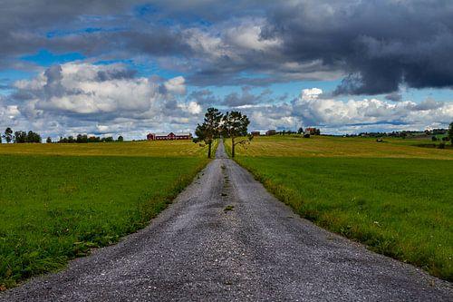 Landschap net buiten Östersund in Zweden van
