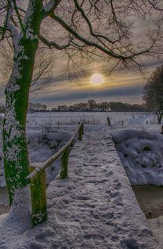Zonsondergang in een winters bos van