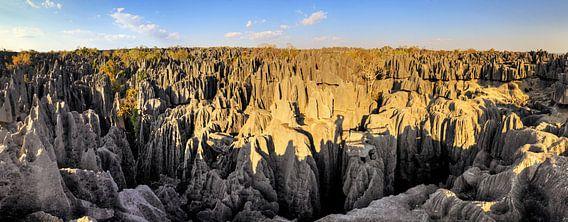 Tsingy panorama Madagaskar van Dennis van de Water