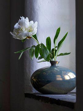 Pfingstrose in Mobach-Vase von Affect Fotografie
