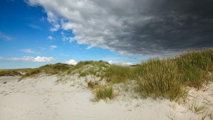 Strand van BVpix