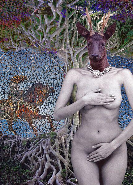 Oh My Deer! van Terra- Creative