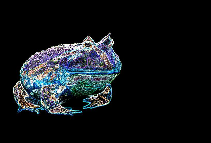 Frog Fantasy Purple van Roderick van de Berg