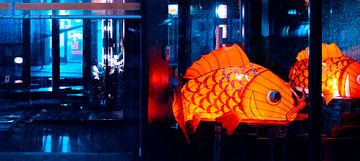 Grote papieren vis van Simon van Nispen