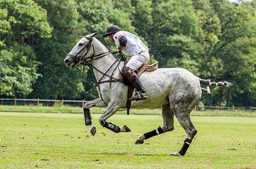 Polo-Wettbewerb in Belgien von Hamperium Photography