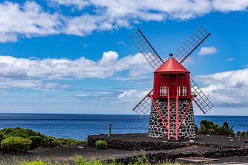 Rode molen in Criacao Velha (Azoren) von Easycopters