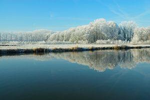 Winters landschap aan de Vecht