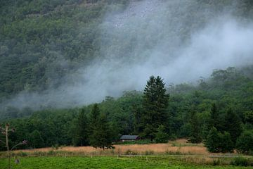 Atmosphärische Natur in Norwegen von Karijn Seldam