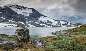 de beroemde weg 55 in noorwegen