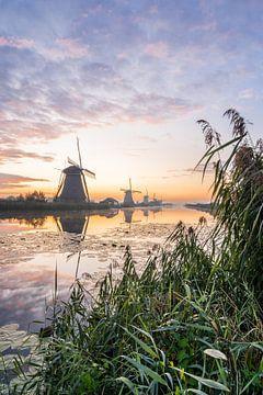 Mühlen entlang des Flusses von Albert Lamme