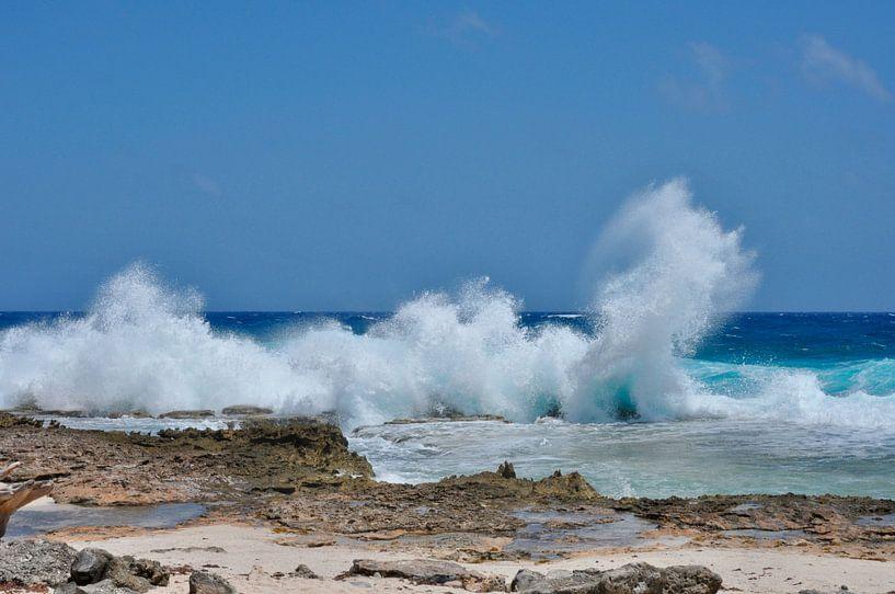 Opspattende golven van Myrthe Visser-Wind