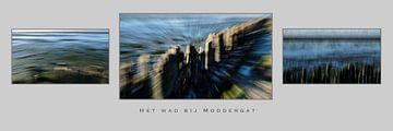 Das Wattenmeer am Moddergat von Eddy Westdijk