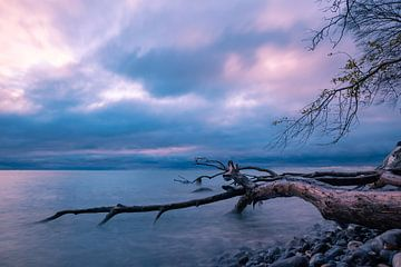 Ostseeküste auf der Insel Moen in Dänemark. von Rico Ködder