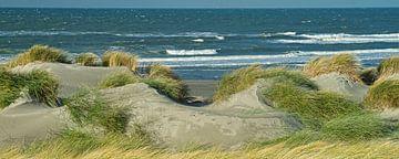 Westlandse duinen met uitzicht over het Noordzee strand van Gert van Santen