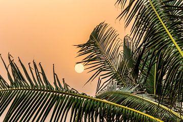Zonsondergang in Ghana van Leo Hoogendijk