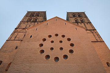 Münster, St. Pauluskathedraal, Westportal, Münster, Duitsland. van wunderbare Erde
