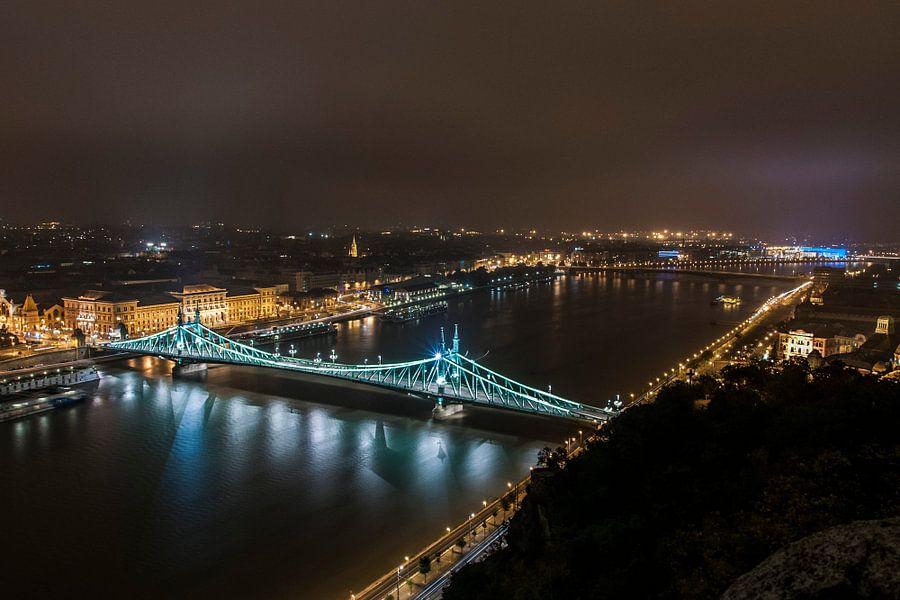 Freedom bridge in budapest hungary