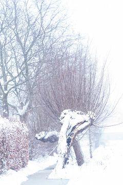 Hochstämmige Kopfweide in der Landschaft von Brabant. Ein winterliches Tableau. von Lieke van Grinsven van Aarle