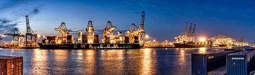 Schepen lossen in de haven van Rotterdam - Amazonehaven van Rene Siebring