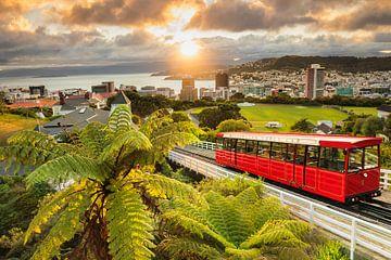 Uitzicht over Wellington bij zonsopgang, Nieuw-Zeeland van Markus Lange