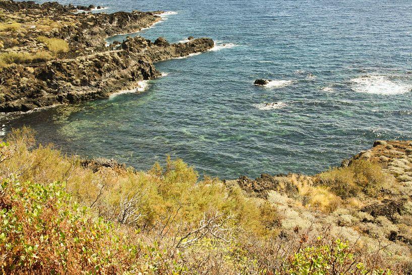 coast of la palma van Rick Van der bijl