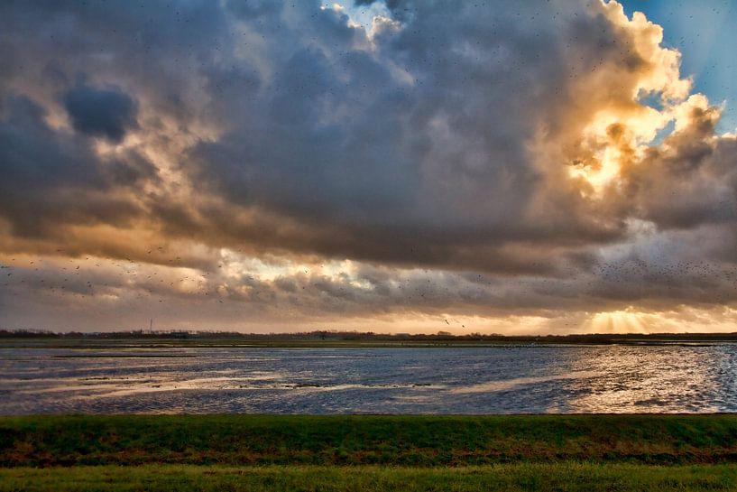 Donkere woken van Van Renselaar Fotografie
