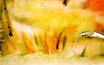 Colours of summer van M.A. Ziehr