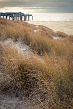 Maison de plage abandonnée sur E Jansen