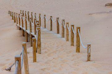 strand pad van ton vogels